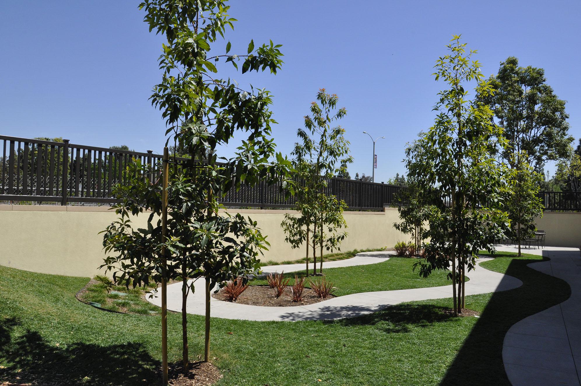 Parson Architecture LePort Irvine Mandarin 12